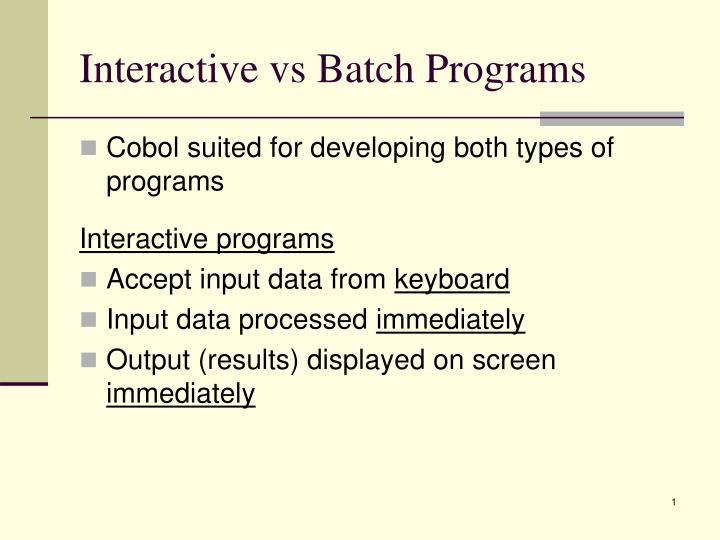 interactive vs batch programs n.