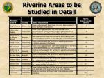 riverine areas to be studied in detail25