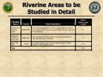 riverine areas to be studied in detail27