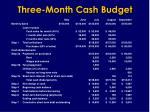 three month cash budget