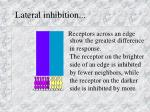 lateral inhibition2