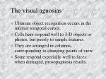 the visual agnosias