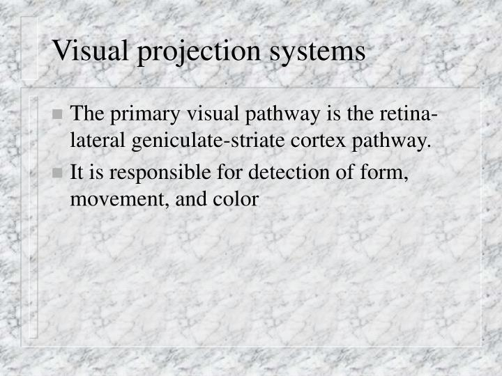 visual projection systems n.