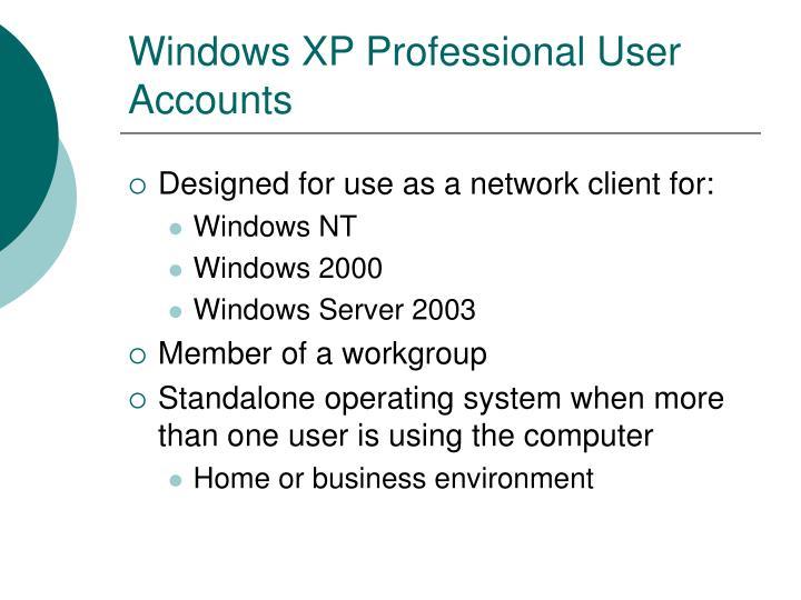 Windows xp professional user accounts