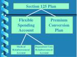 section 125 plan