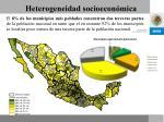 heterogeneidad socioecon mica