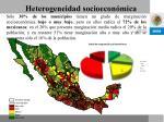 heterogeneidad socioecon mica1