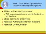 some of the necessary elements of good cash management systems