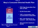 mary s consumer directed health plan