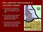 also called the intermontaine or columbian plateau