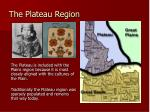 the plateau region