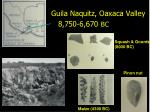 guila naquitz oaxaca valley 8 750 6 670 bc