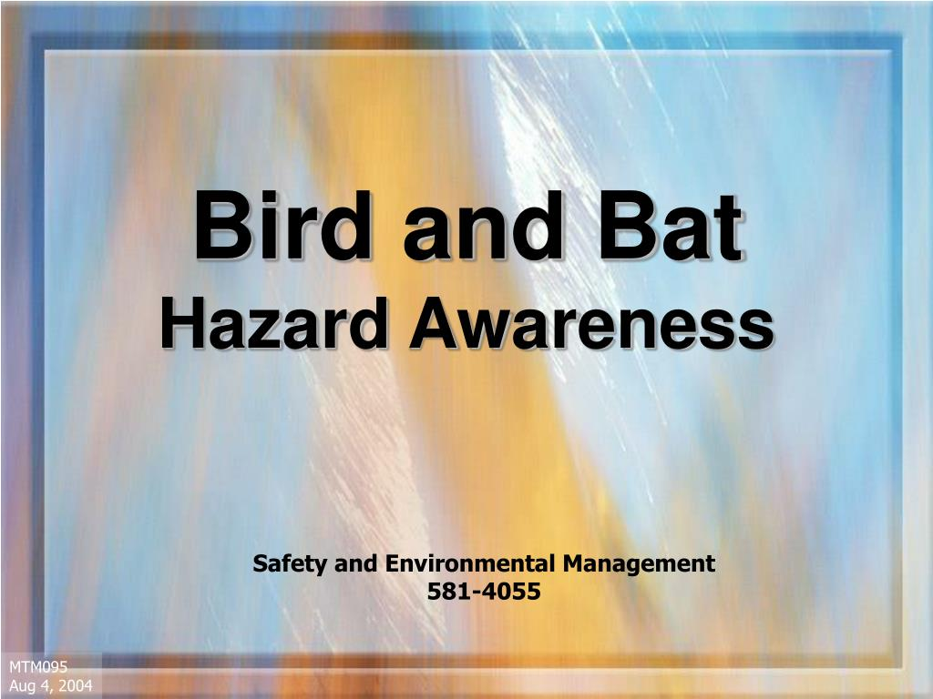 bird and bat hazard awareness l.