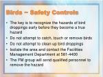 birds safety controls