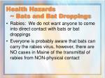 health hazards bats and bat droppings