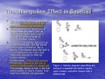 the trampoline effect in baseball