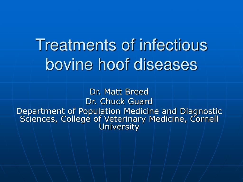 treatments of infectious bovine hoof diseases l.
