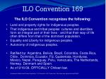 ilo convention 169