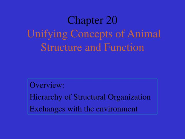 chapter 20 unifying concepts of animal structure and function n.