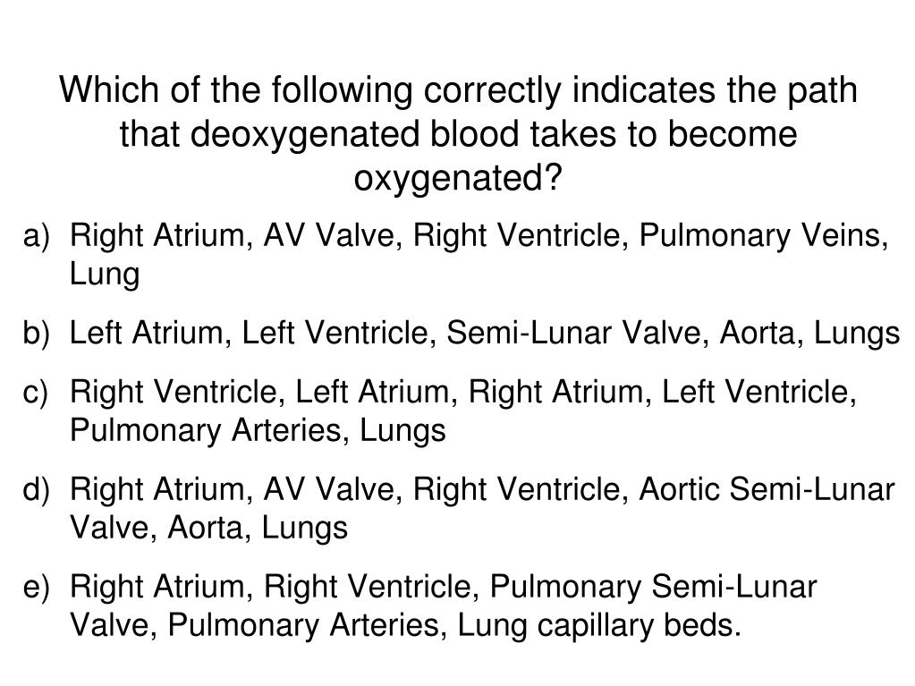 Which of the following correctly indicates the path that deoxygenated blood takes to become oxygenated?