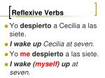 reflexive verbs19