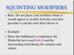 squinting modifiers61