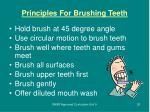 principles for brushing teeth