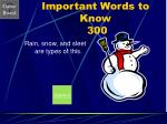 important words to know 300