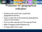 protection for geographical indication