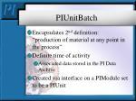 piunitbatch