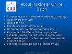 about riskmeter online batch