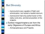 bat diversity39