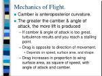 mechanics of flight13