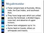 megadermatidae