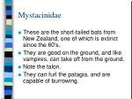 mystacinidae