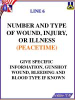 number and type of wound injury or illness peacetime