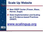 scale up website