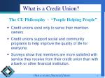 what is a credit union3