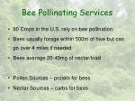 bee pollinating services