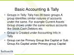 basic accounting tally13