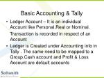 basic accounting tally14