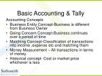 basic accounting tally4
