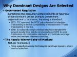 why dominant designs are selected5