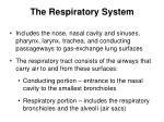 the respiratory system3