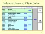 budget and summary object codes