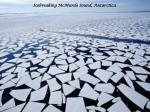 icebreaking mcmurdo sound antarctica