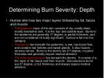 determining burn severity depth