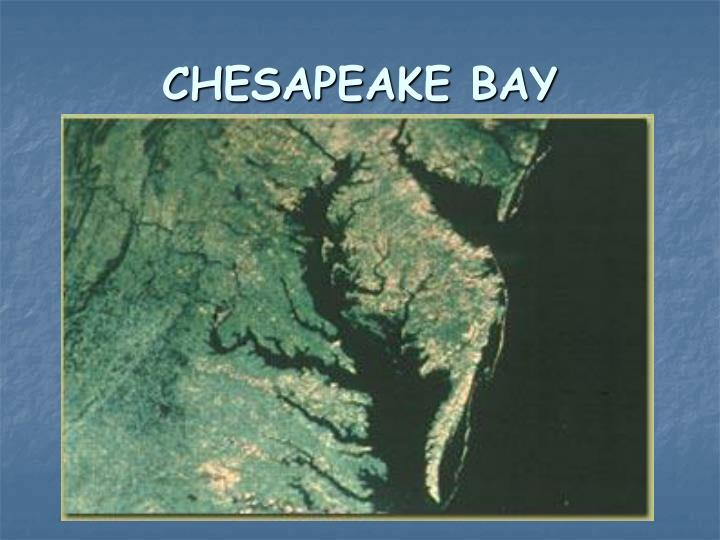 chesapeake bay n.