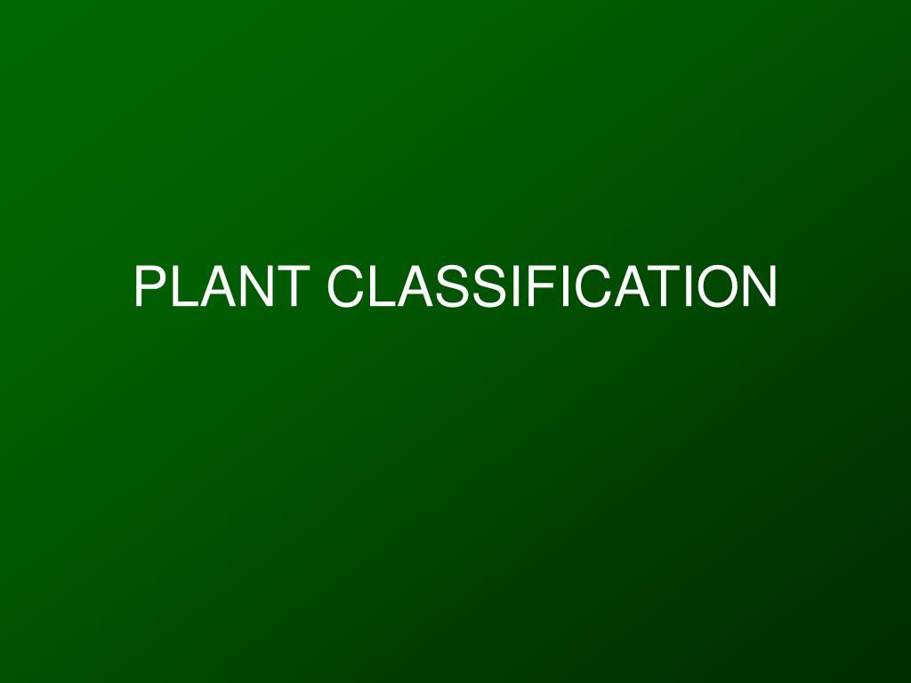 plant classification l.