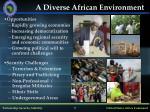 a diverse african environment